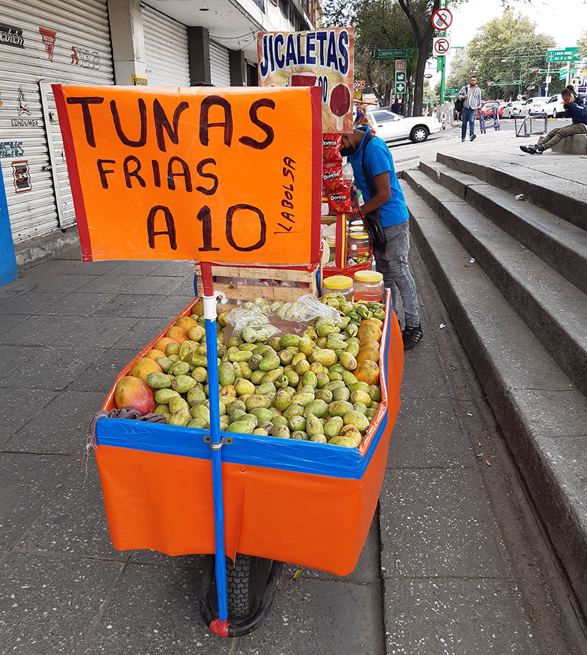 Tunas for sale in Colonia Doctores, Mexico City.