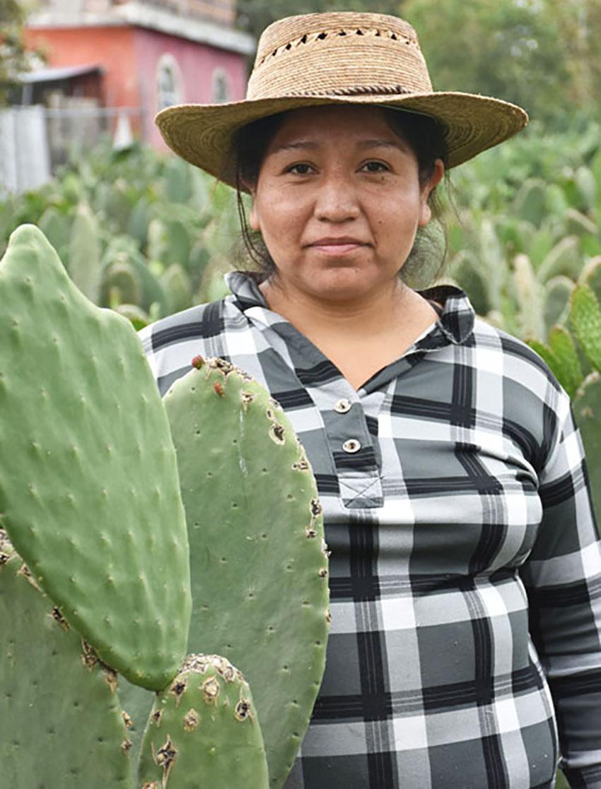 Zarai Loza's family has been growing nopal for generations.