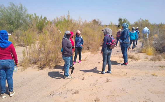 The Searching Mothers of Sonora.