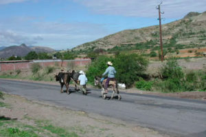 Zapotec farmers return from their 'milpa,'