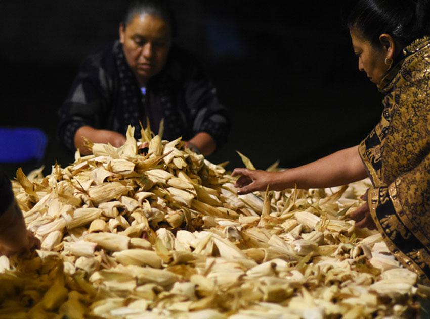 Cientos de tamales de frijoles