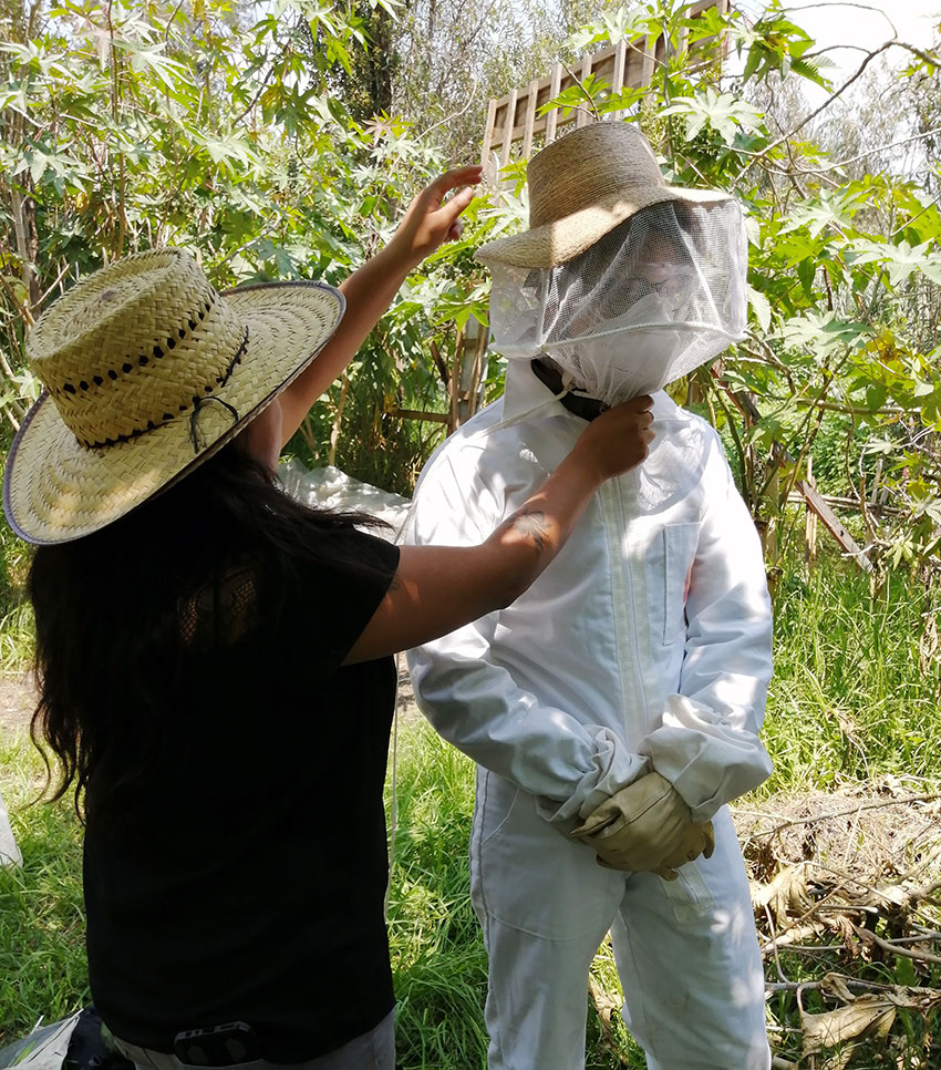 Sandra Corales dresses an adventurous tour-goer on a visit to their 27 hives.