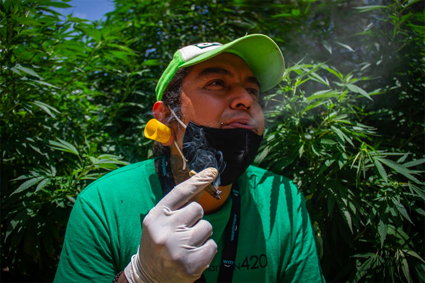 A pot smoker enjoys a joint at Plantón 420.
