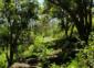 2—–b-sm2-Huilotan-trail