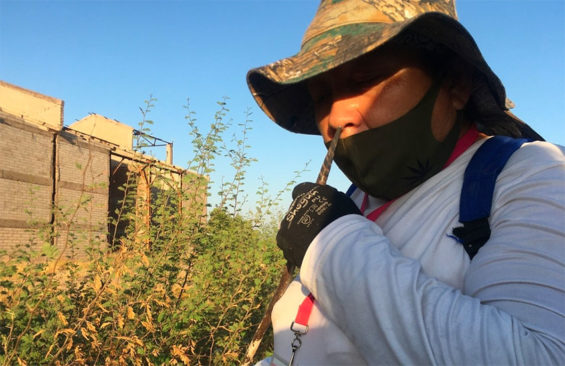 An Obregón searcher sniffs a metal rod for evidence of a body.