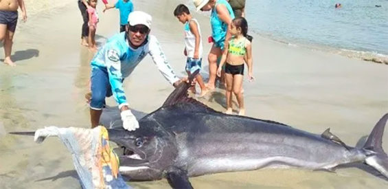 One of the Puerto Escondido fishermen with the big catch.