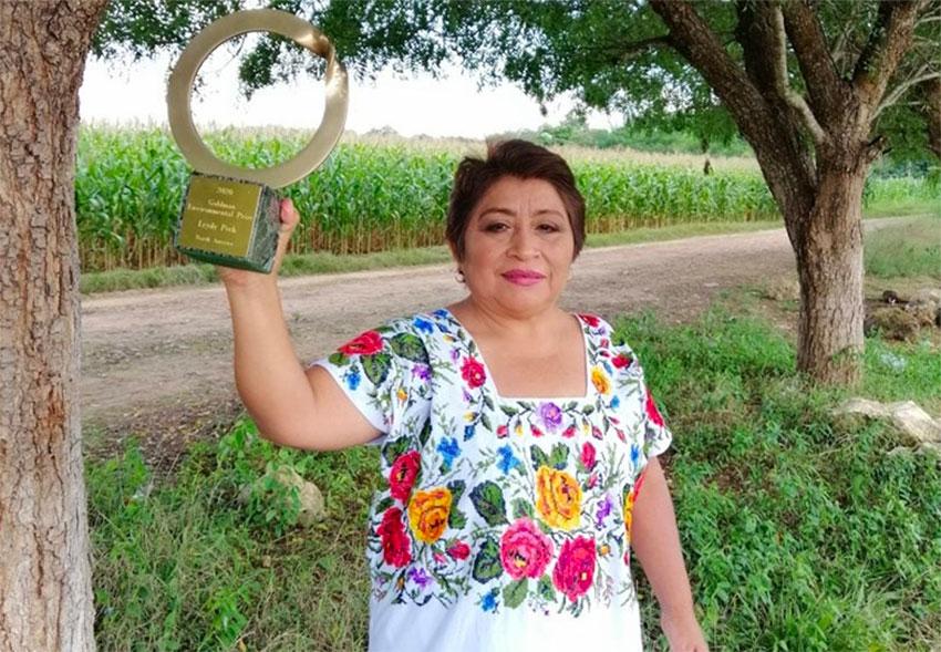 Beekeeper Leydy Pech and her award.