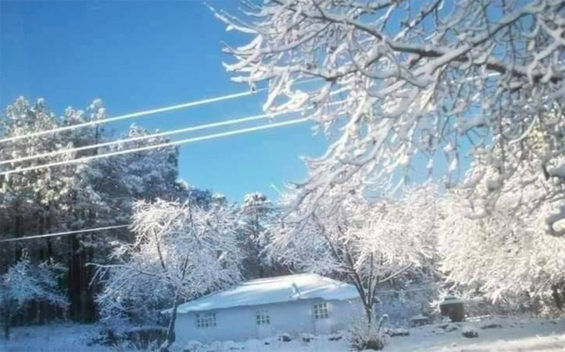 A wintry scene Friday morning in northwestern Chihuahua.