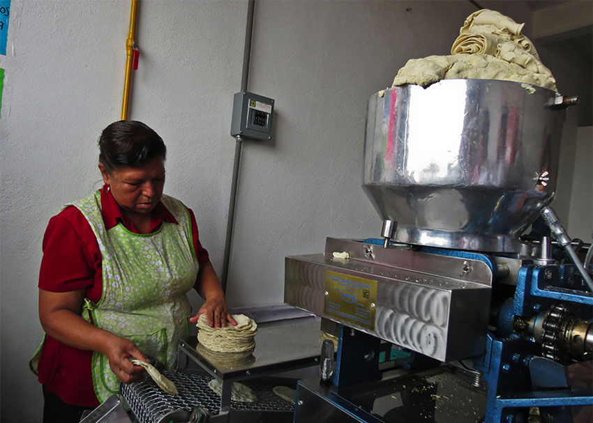 Tortilla makers save money and turn to solar power in Querétaro thumbnail