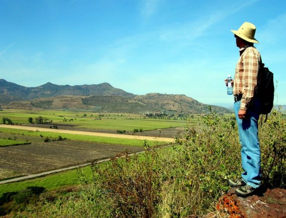 This farmland was a lake of more than 70 square kilometers until the Mexican government dried it up in 1930 to create cane fields.