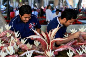 "In the city of Oaxaca, enough people love radishes that there is a longstanding Christmastime festival celebrated there called ""Night of the Radishes""."