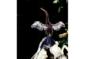 3—–Anhinga-wings-extnd-CROP