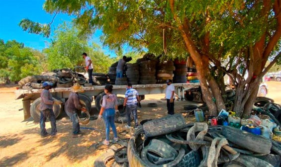 Used tires are loaded on a truck in San Pedro Mixtepec.
