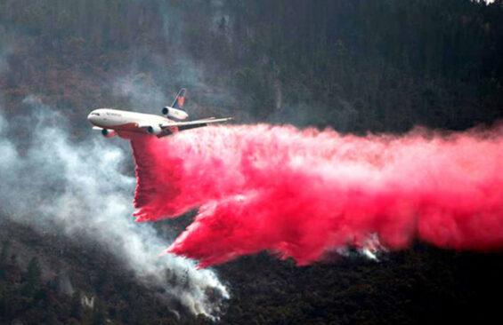 Fighting a forest fire in Arteaga, Coahuila, in March.
