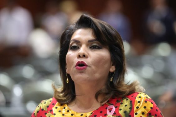 Deputy Lorenia Iveth Valles has introduced the draft constitutional reform.