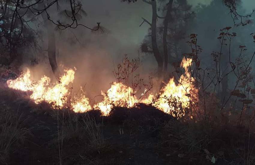 Forest fire in Valle de Bravo, México state last month.