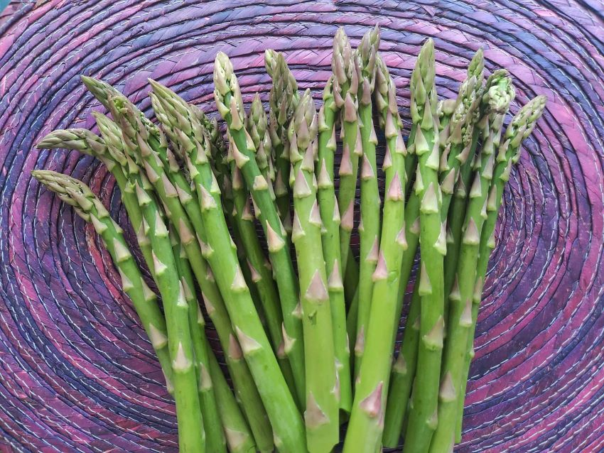 Right now is arguably the best part of the asparagus season in Mexico.