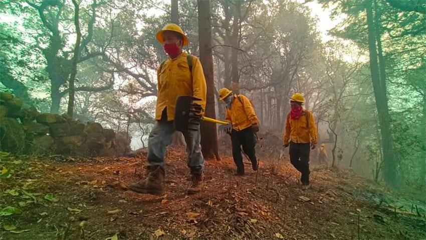 Firefighters in Morelos this week.