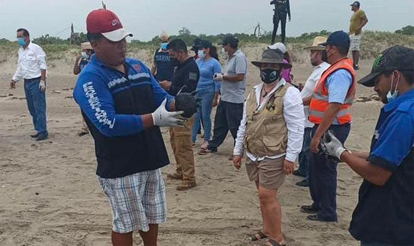 Un miembro del equipo de limpieza con una bola de alquitrán en la playa de Tecolutla.