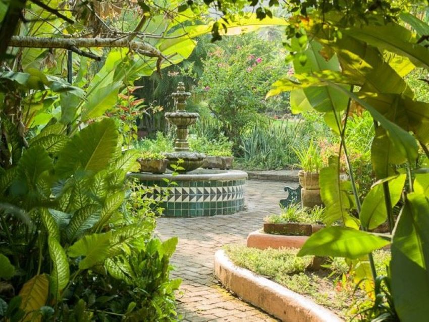 The home's courtyard garden is the perfect place to relax and reconnect with nature.