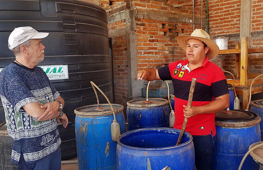 Barrels at Agave Azul distillery