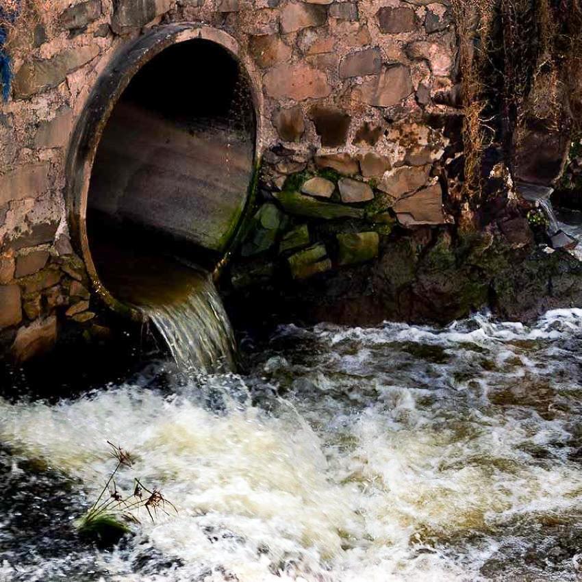 untreated sewage flows into Arroyo Ahogado in Guadalajara