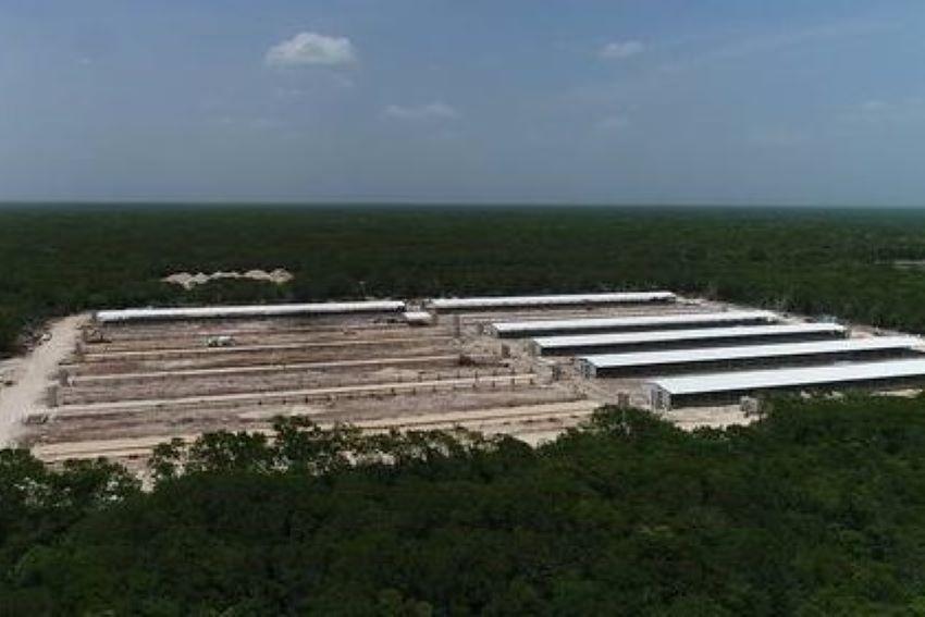 Producción Alimentaria Porcícola farm site.