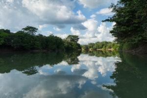 northern Tabasco wetlands
