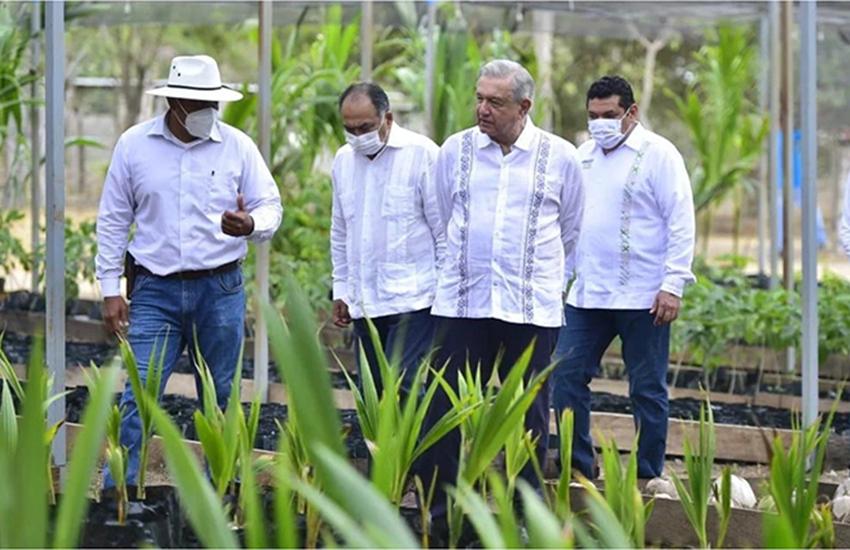 President Andres Manuel Lopez Obrador Sembrando Vida program