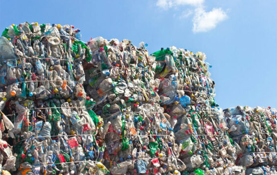 PET plastic, baled for recycling.