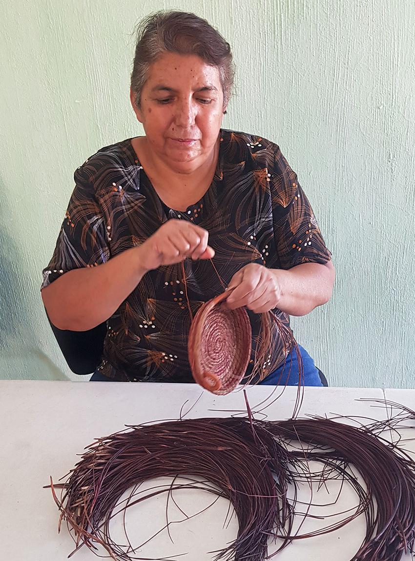 Marina-working-with-wet-pine-needles