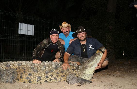 crocodile in Mazatlan