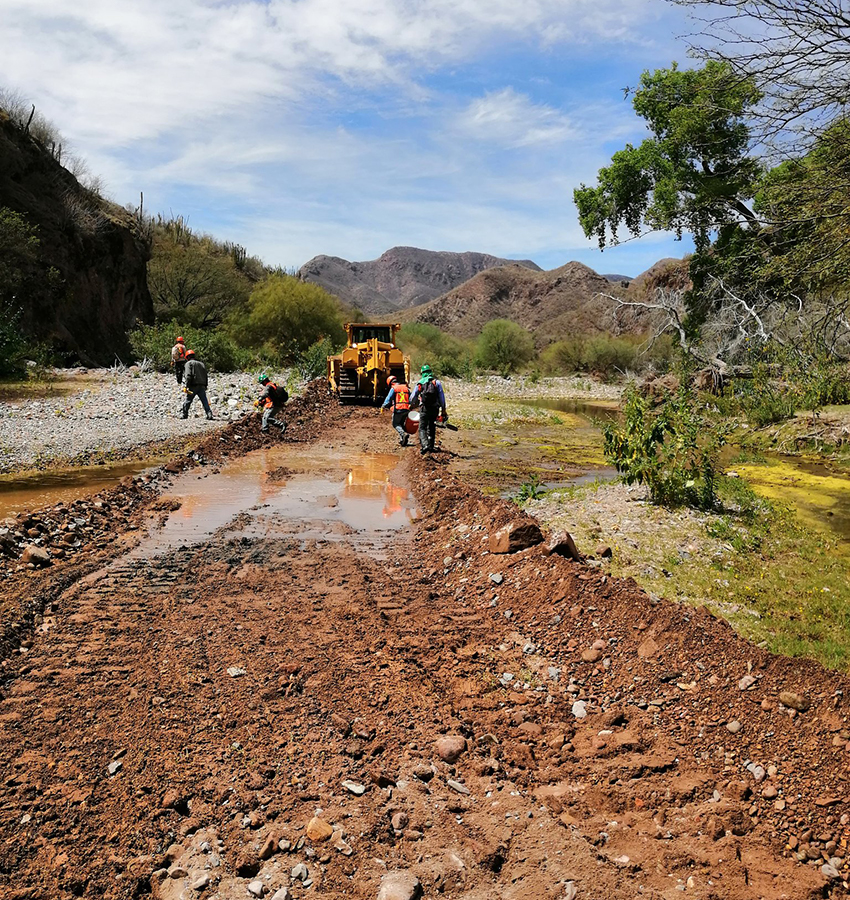 Construction workers clearing road in preparation for construction of Bacanora Lithium's planned mine in Sonora.