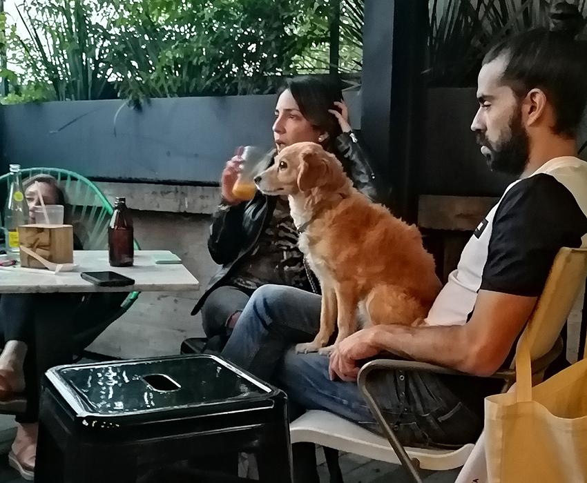 Choza restaurant, Roma, Mexico City