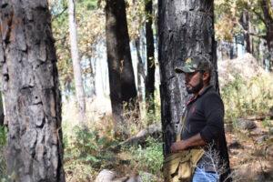 Guajes de Ayala forest
